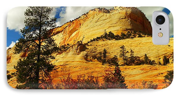 A Tree And Orange Hill Phone Case by Jeff Swan
