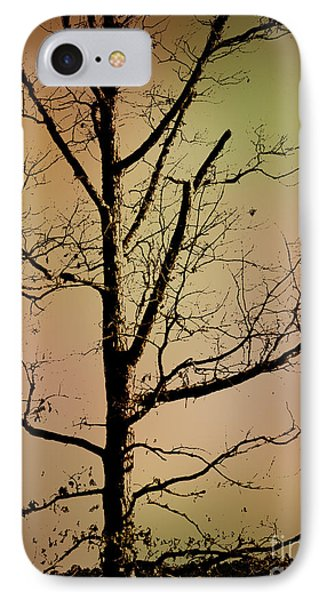 A Tree By The Lake IPhone Case
