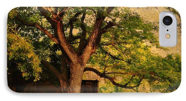 A Tree Phone Case by Jenny Rainbow