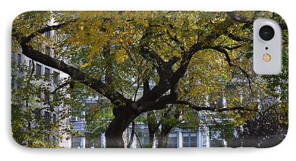 A Tree On Fifth Avenue IPhone Case by Robert Daniels