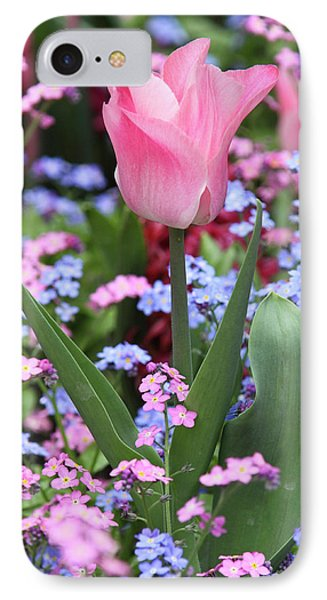 A Tulip At Luxembourg Gardens, Paris IPhone Case by William Sutton