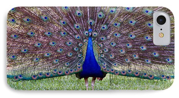 A Vargos Peacock IPhone Case by Tim Stanley