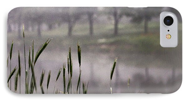 A View In The Mist IPhone Case by Bruce Patrick Smith