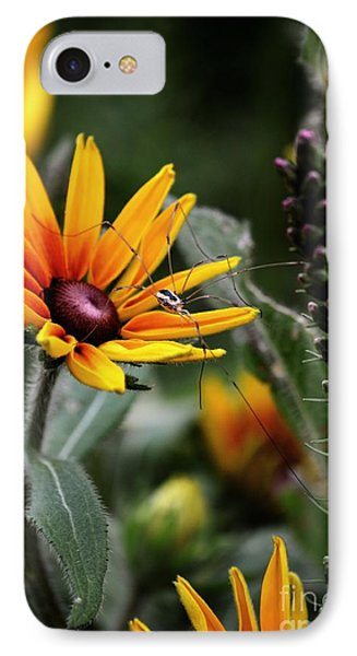 A Walk In The Garden IPhone Case