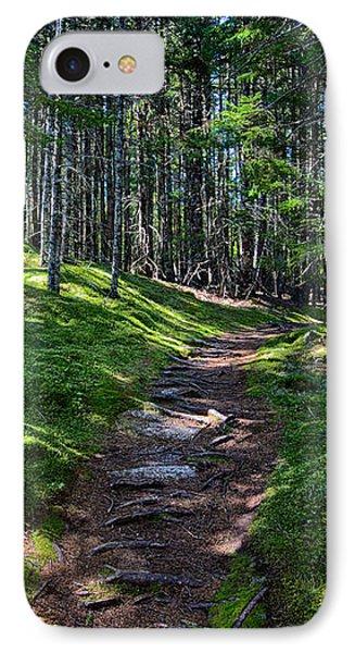 A Walk In The Woods Phone Case by John Haldane