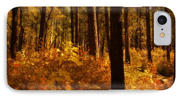 A Walk Through The Woods  Phone Case by Saija  Lehtonen