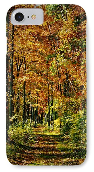A Walk To Remember In Autumn IPhone Case
