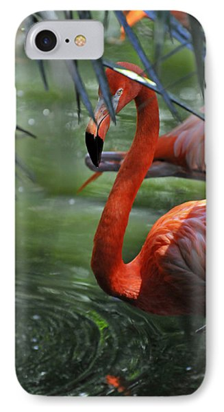 IPhone Case featuring the photograph A Watchful Eye by Kenny Francis