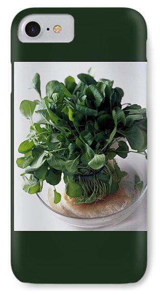 A Watercress Plant In A Bowl Of Water IPhone Case