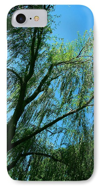 A Weeping Willow Tree IPhone Case by Cora Wandel