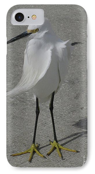IPhone Case featuring the photograph A Windy Day by Donna Brown