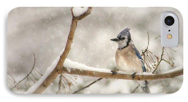 A Winter's Day Phone Case by Lori Deiter