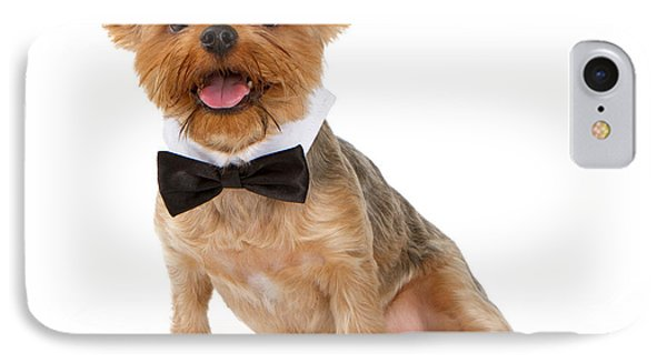 A Yorkshire Terrier Puppy With A Bow Tie IPhone Case by Susan Schmitz