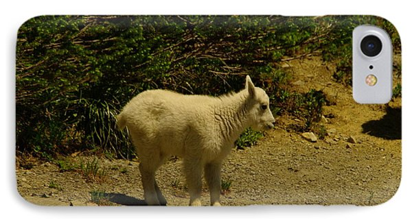 A Young Mountain Goat Phone Case by Jeff Swan