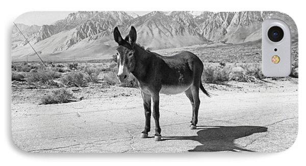 Aberdeen Donkey IPhone Case