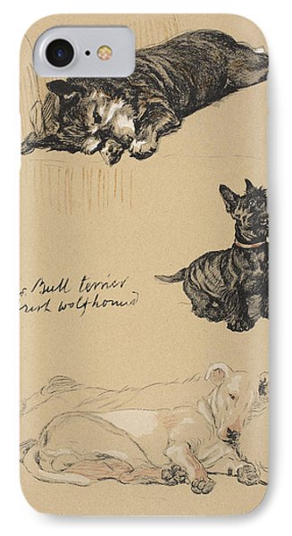 Aberdeens, Bull Terrier And Irish IPhone Case