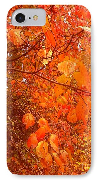 Ablaze IPhone Case by Elizabeth Carr