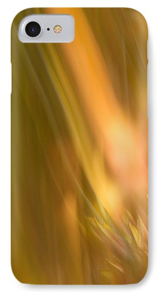 Abstract 13 IPhone Case