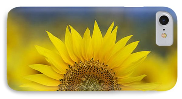 Abstract Sunflower Panoramic  Phone Case by Tim Gainey