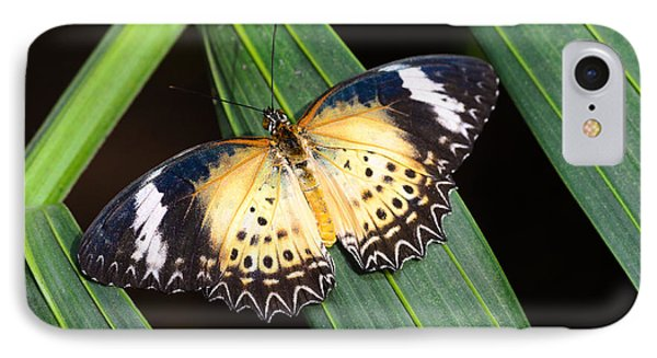 Butterfly On Leaves IPhone Case