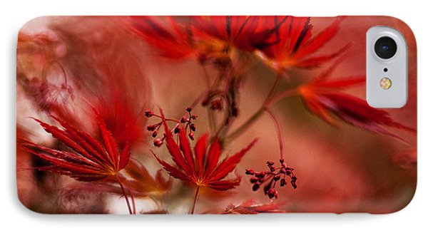 Acer Storm IPhone Case by Mike Reid