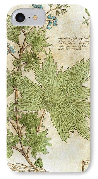 Aconitum Seventeenth-century Engraving IPhone Case by Prisma Archivo