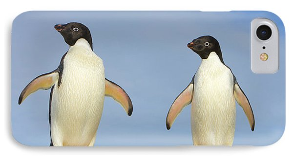 Adelie Penguin Duo IPhone Case by Yva Momatiuk John Eastcott
