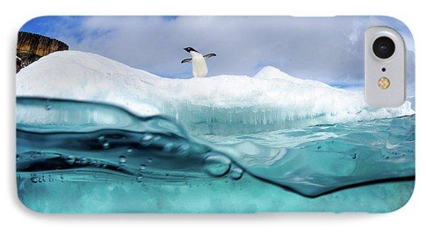 Penguin iPhone 7 Case - Adelie Penguin On Iceberg by Justin Hofman