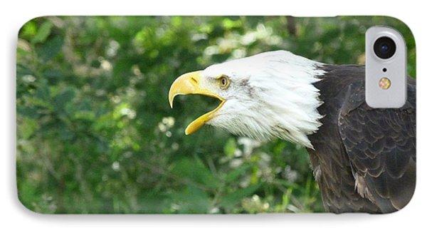 IPhone Case featuring the photograph Adler Raptor Bald Eagle Bird Of Prey Bird by Paul Fearn
