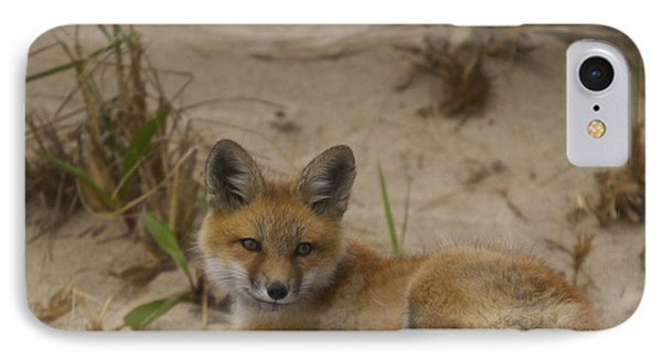 Adorable Baby Fox IPhone Case by Amazing Jules