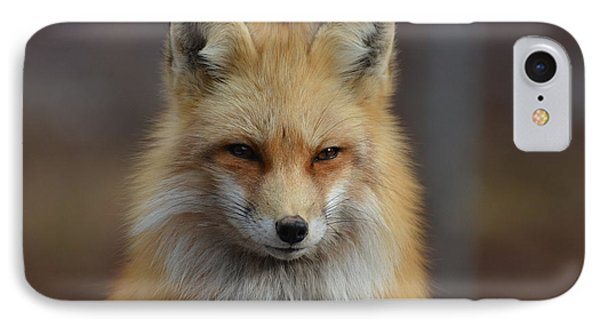 Adorable Red Fox IPhone Case