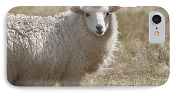 Adorable Sheep IPhone Case by Loriannah Hespe
