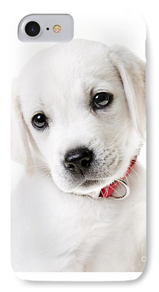 Adorable Yellow Lab Puppy Phone Case by Diane Diederich