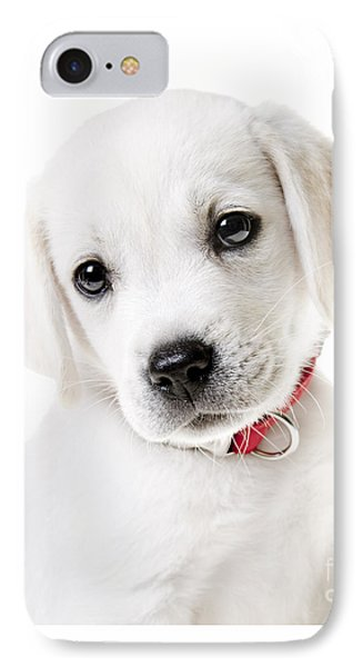 Adorable Yellow Lab Puppy IPhone Case