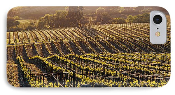 Aerial View Of Rows Crop In A Vineyard IPhone Case by Panoramic Images