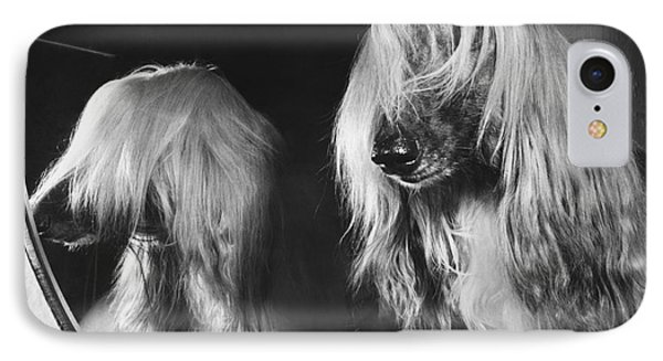 Afghan Hound Phone Case by ME Browning