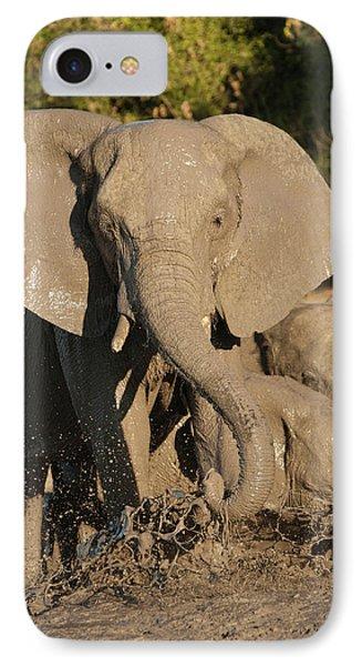Africa, Botswana, Chobe National Park IPhone Case