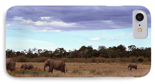Africa, Kenya, Masai Mara National IPhone Case by Panoramic Images