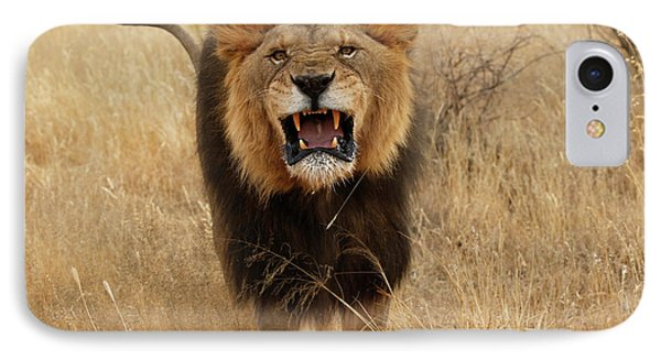 Africa, Namibia Aggressive Male Lion IPhone Case