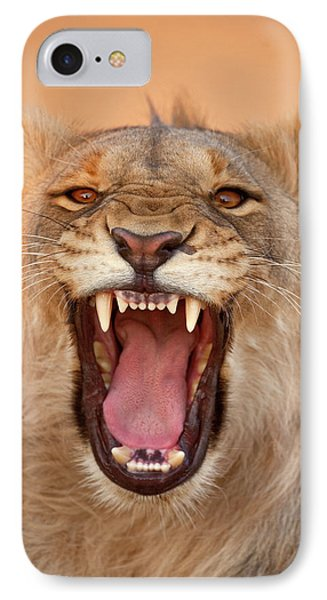 Africa, Namibia Male Lion Growling IPhone Case