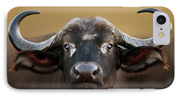 African Buffalo Cow Portrait IPhone Case by Johan Swanepoel