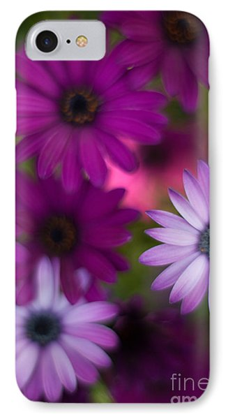 African Daisy Collage IPhone Case by Mike Reid