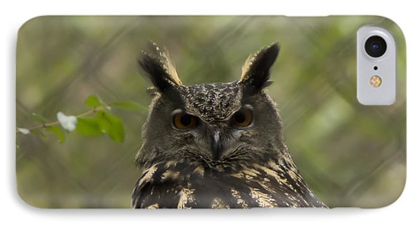 African Eagle Owl IPhone Case