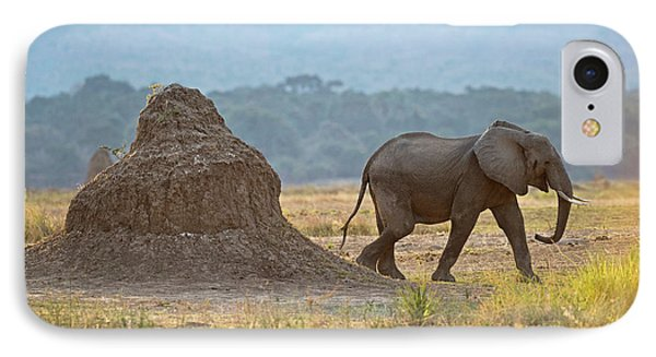 African Elephant Alongside Termite Mound IPhone Case by Tony Camacho