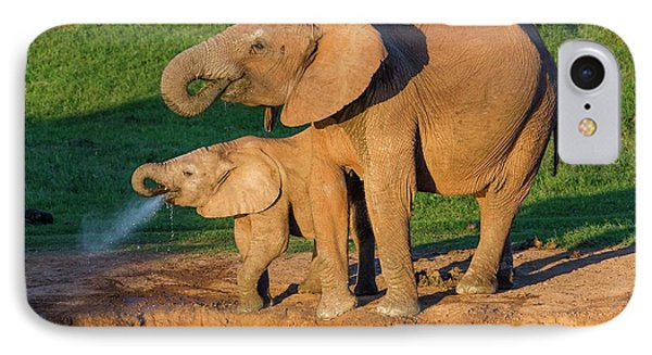 African Elephant And Calf Drinking IPhone Case by Peter Chadwick