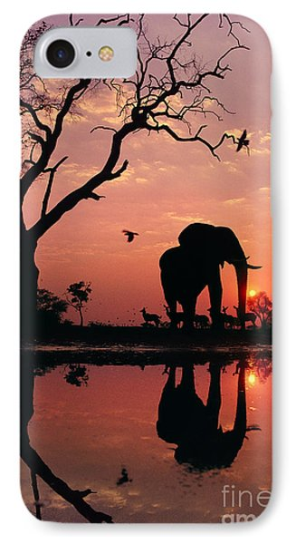 African Elephant At Dawn Phone Case by Frans Lanting MINT Images