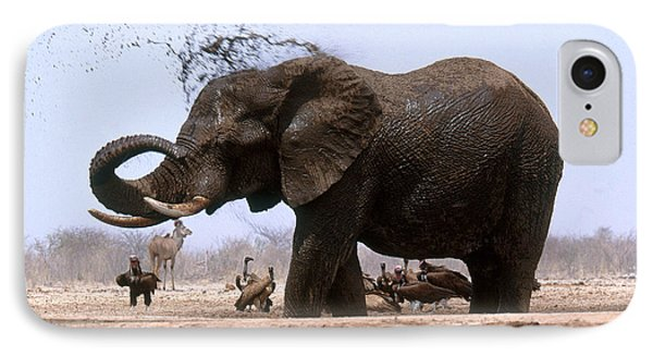 African Elephant Bathing IPhone Case by Art Wolfe