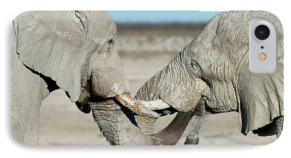 African Elephant Bulls Drinking Water IPhone Case by Tony Camacho