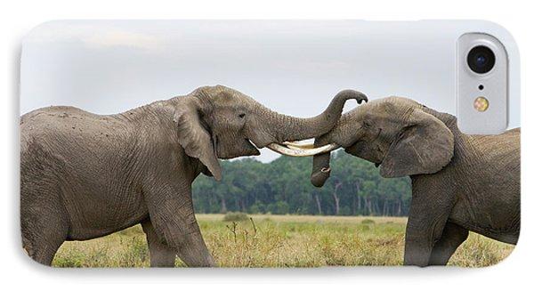 African Elephant Bulls Fighting IPhone Case by Suzi Eszterhas