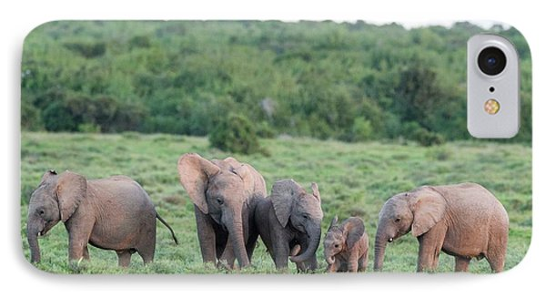 African Elephant Calves Greeting IPhone Case by Peter Chadwick